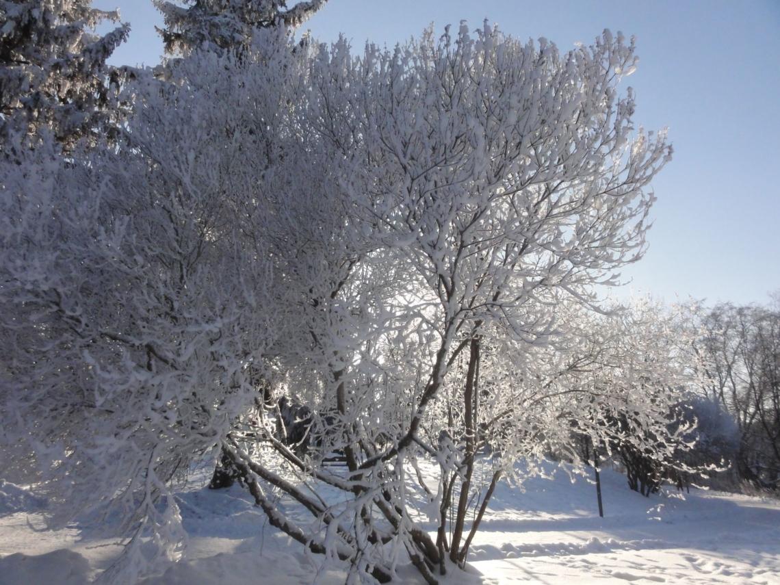 20180219 Tampere 18